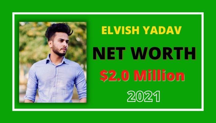 Elvish Yadav Net Worth