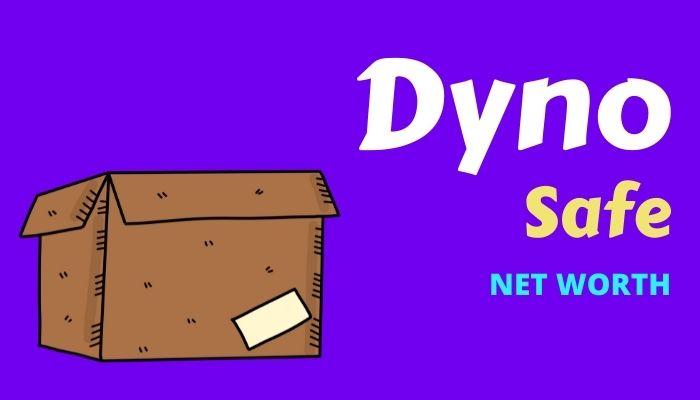 Dyno Safe Net Worth