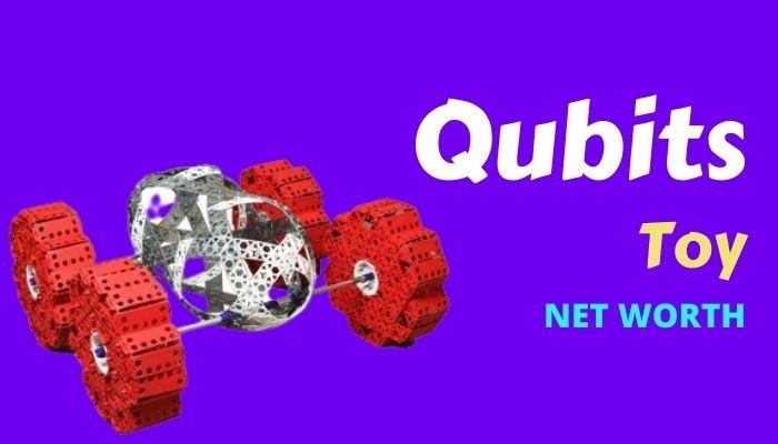 Qubits Net Worth